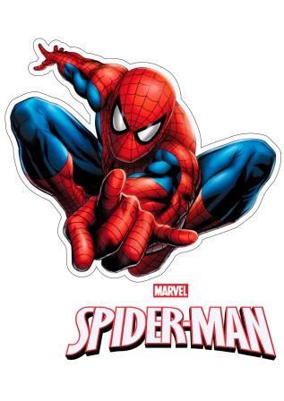 Людина-Павук 6